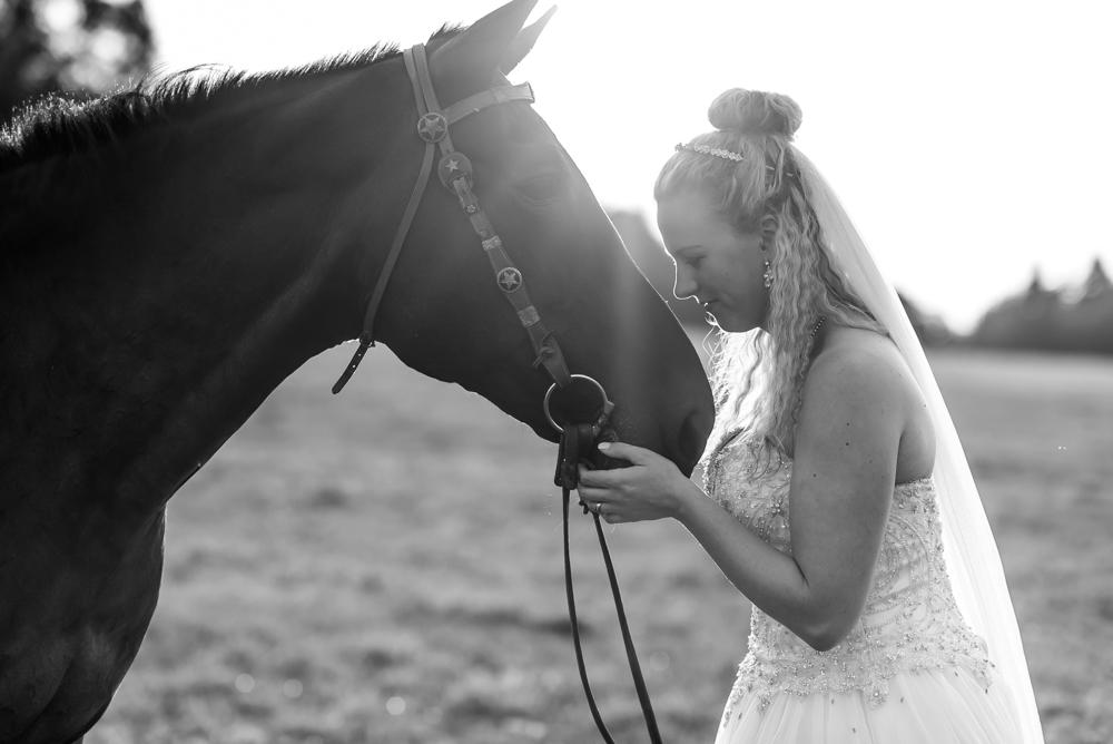 Afterwedding Pferde shooting hochzeit
