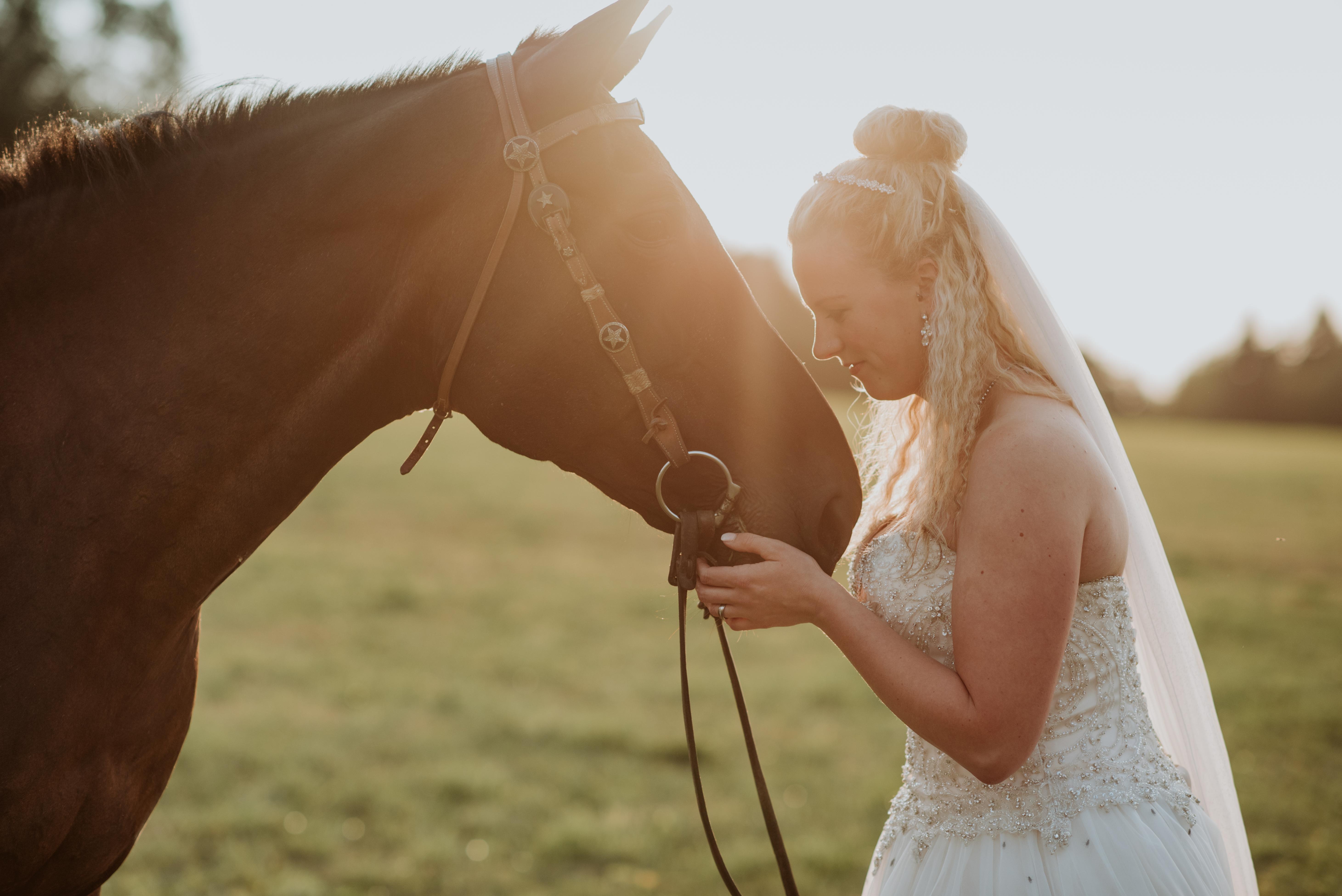 Afterwedding Shooting Pferdeshooting Braut Wedding Westerwald Rheinlandpfalz Hessen